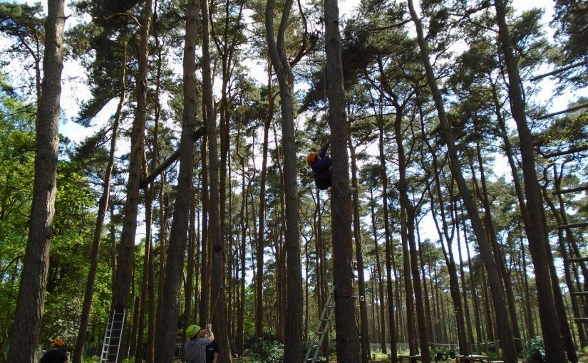 High Ropes at Avon Tyrrell 2016