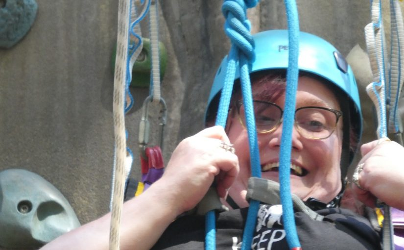 Avon Tyrrell 2019 – High Ropes and Climbing Wall